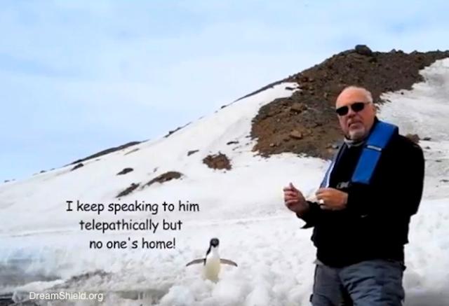 telepathic penguin